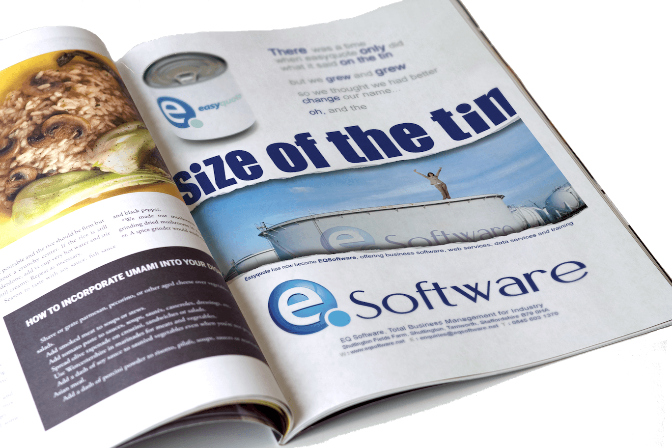 An image showing one of the A4 full page adverts designed for E Q Software